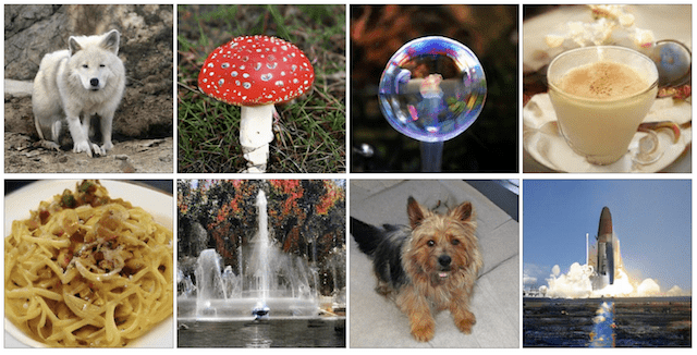 Examples of Large High-Quality 512x512 Class-Conditional Images Generated by BigGAN